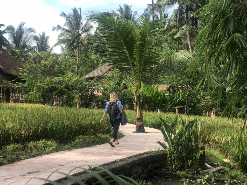 ubud bali yoga vegan indonesia