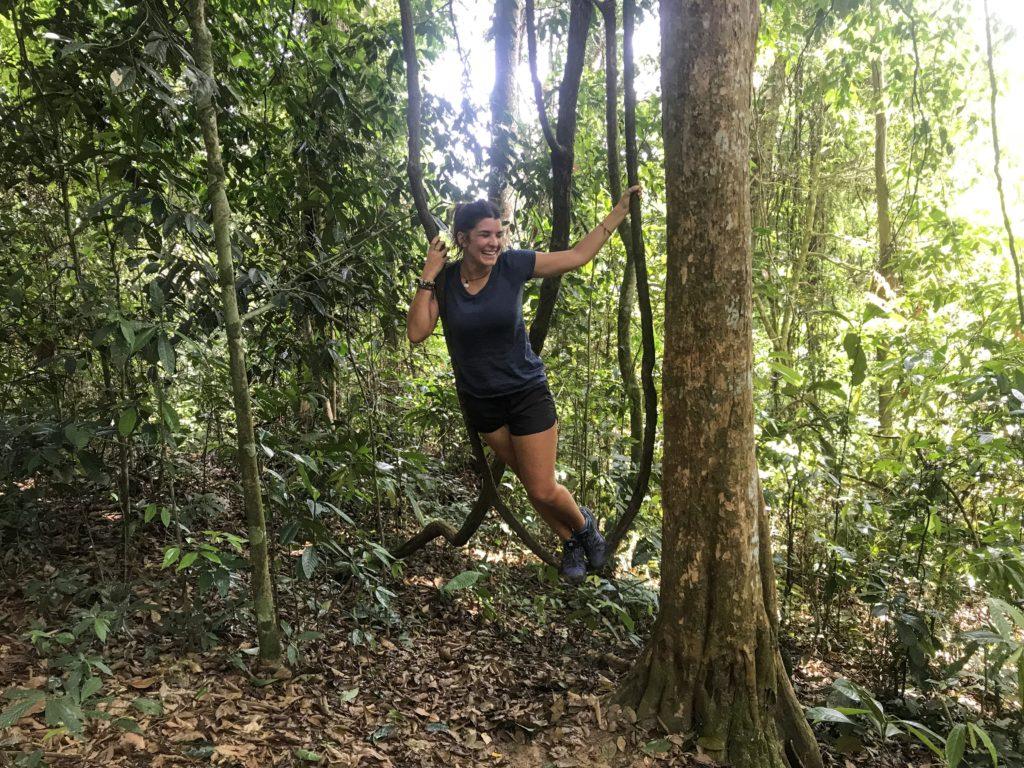 jungle trip sumatra ourang utan_3