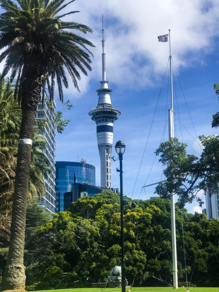 one day in auckland new zealand