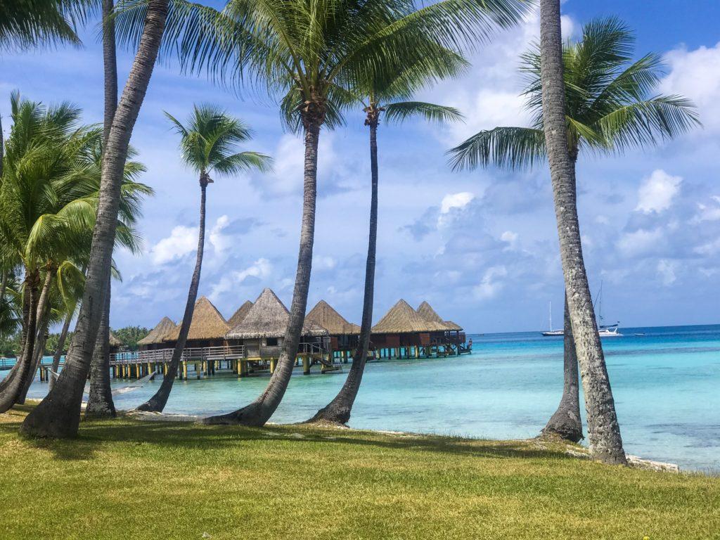 french polynesia polynésie tahiti rangiroa scuba diving