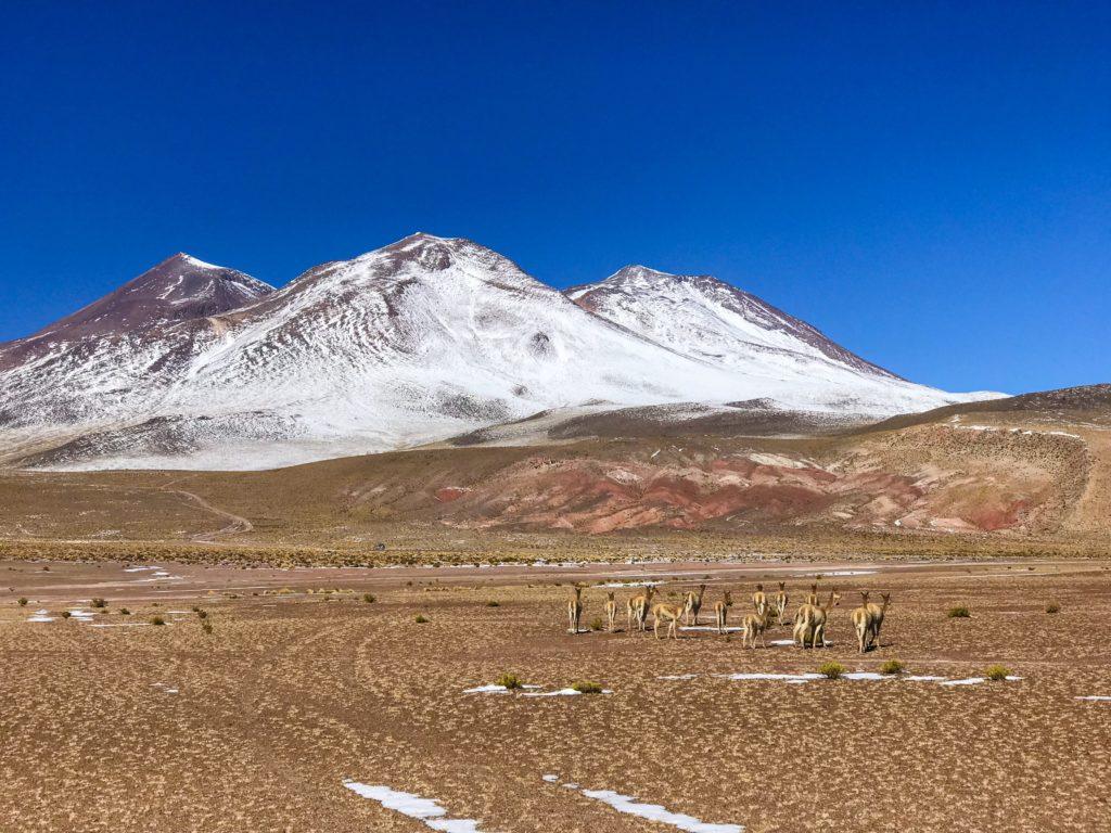 Désert Salar d'Uyuni Bolivie Bolvia
