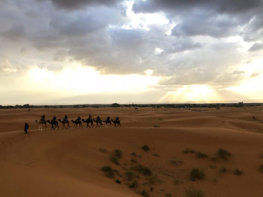 visit desert sahara maroc morocco merzouga camel tour