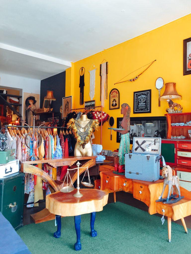 visiter le cap cape town afrique obervatory
